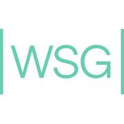 WSG AG